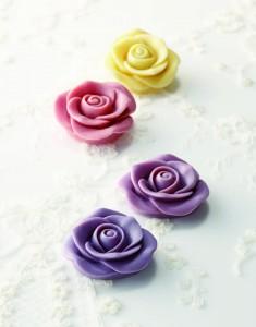 エピーヌのバラ